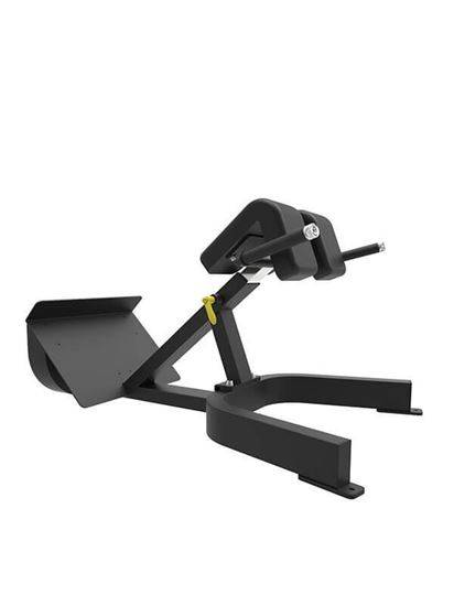 Low Back Extension Machine Best Back Exerc...