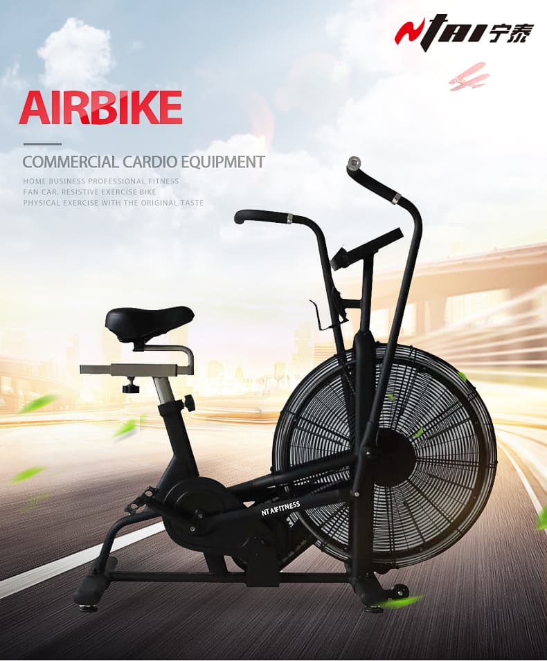 Buy Assault Air Bike Online at Low Prices in China
