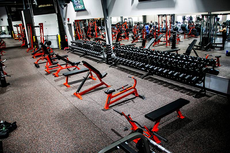 Get Best Cheap Gym Equipment & Workout Equipment For Your Gym