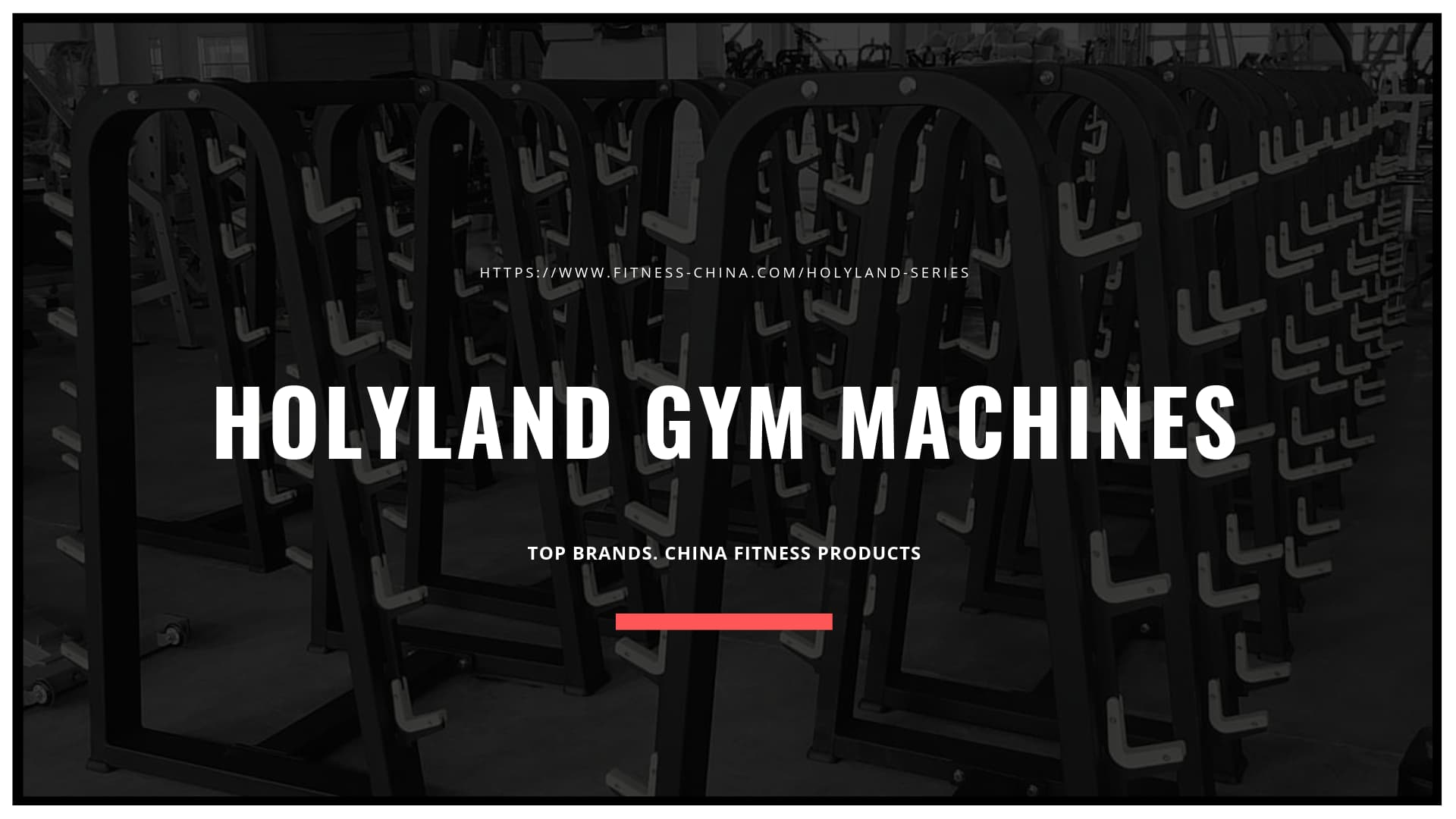Gym Machines For Sale | HOLYLAND