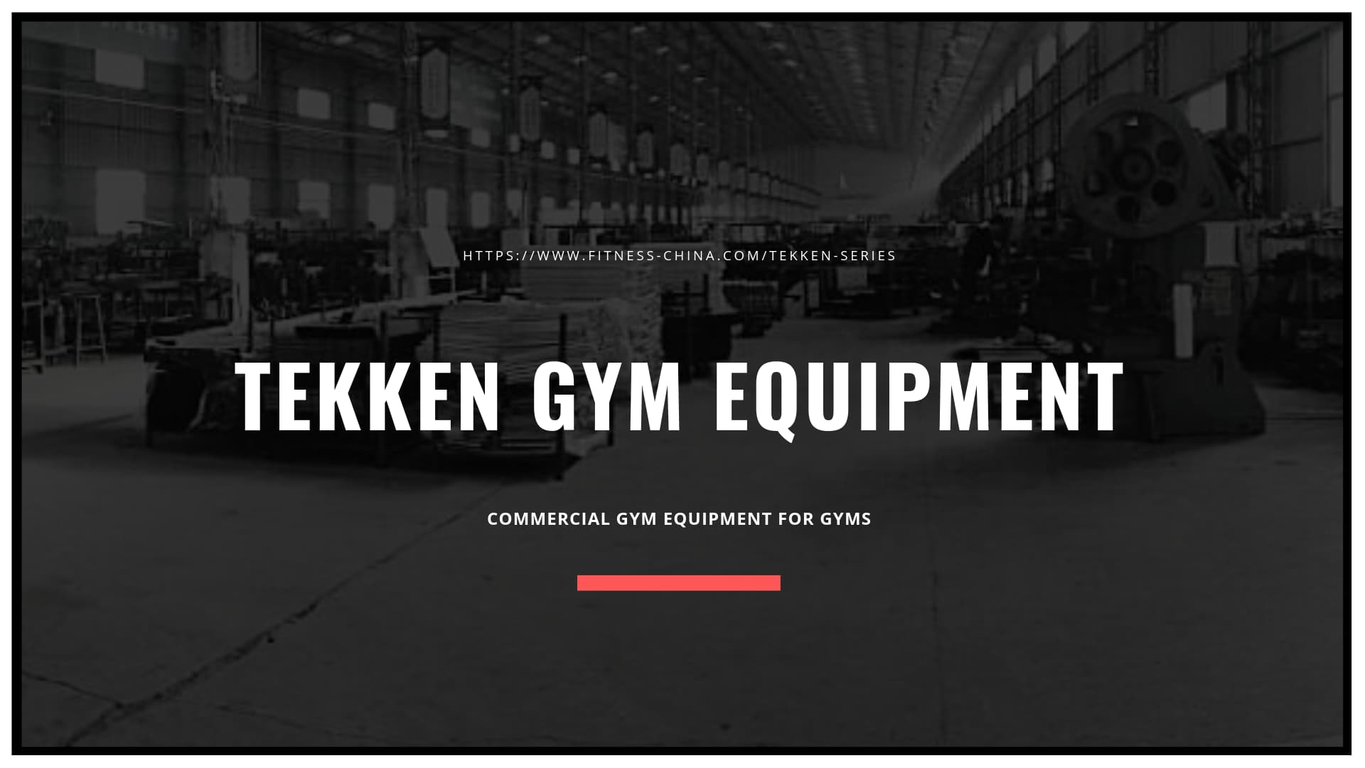 Commercial Gym Exercise Equipment For Sale | TEKKEN